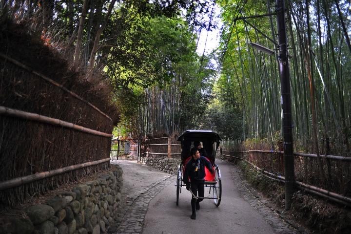 Bamboo floor bamboo floor low humidity for Hardwood floors low humidity
