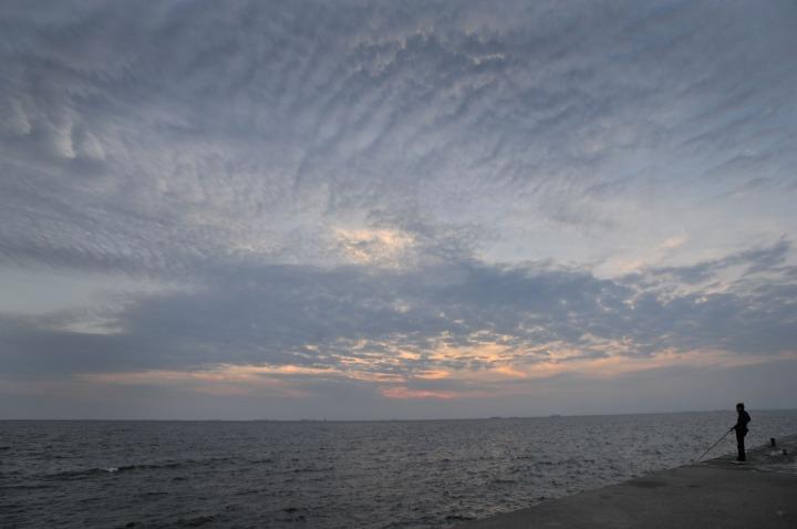 shinmaiko_marine_park_1028