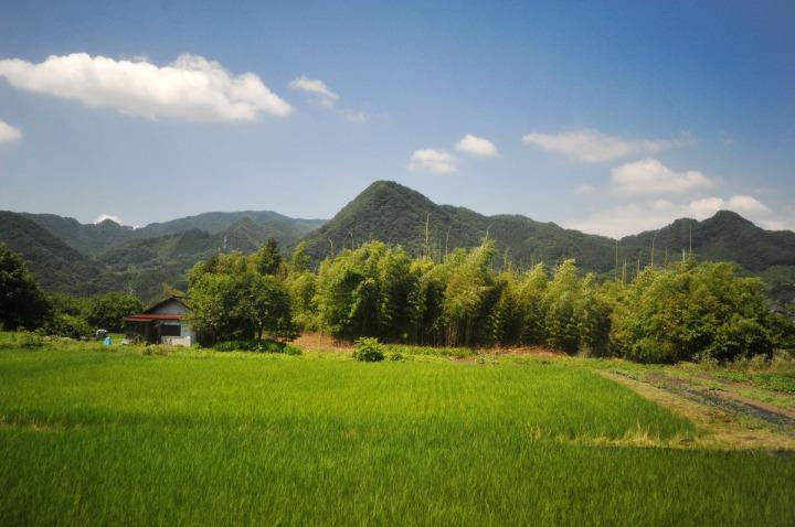 gunma_train_landscape_3247