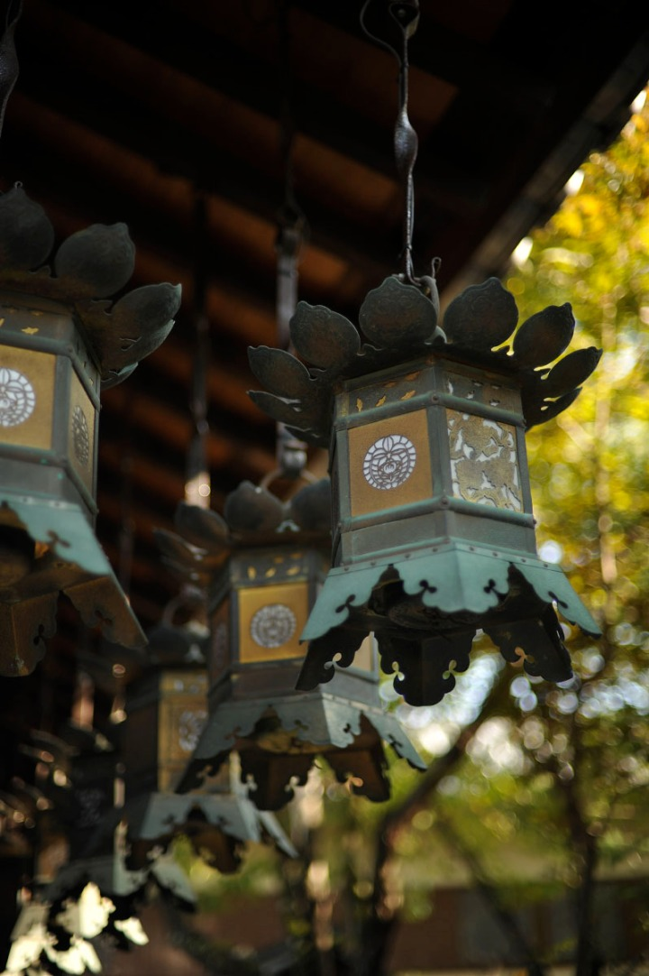 yakuonhachiman_shrine_nara_6940