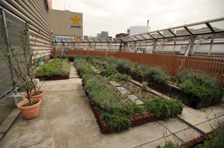 mitsukoshi_roof_garden_ginza_8323