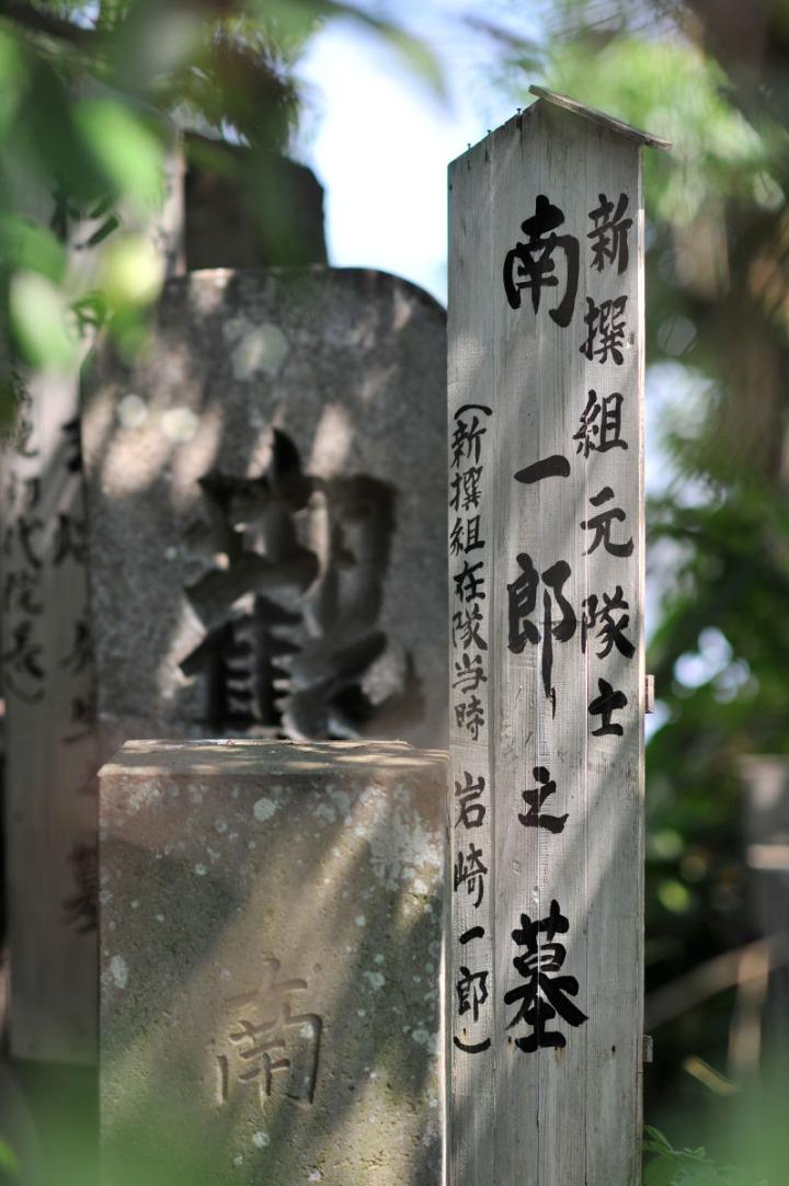 numazu_cemetery_cat_3547