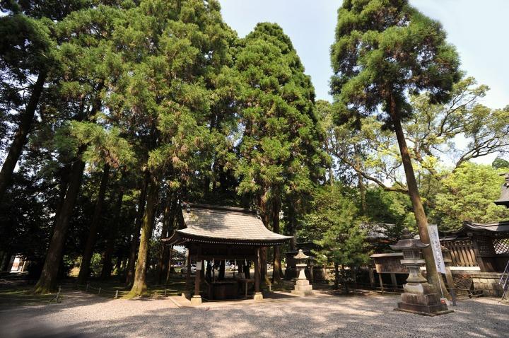 tsuno_shrine_miyazaki_3523