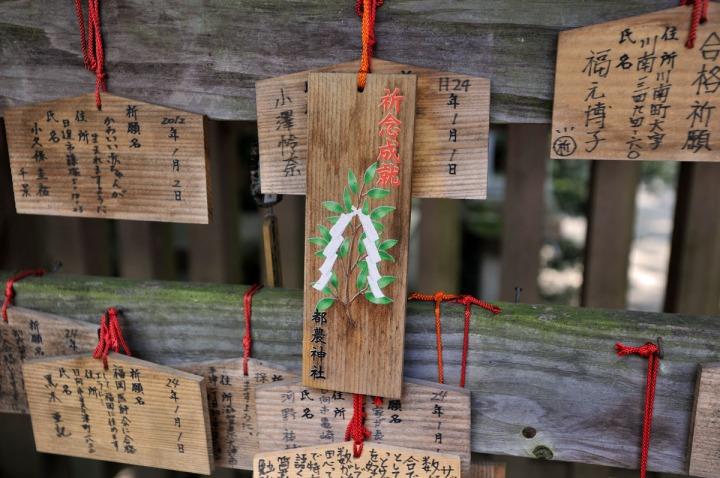 tsuno_shrine_miyazaki_3528