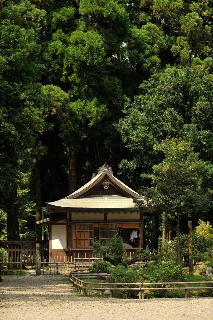 tsuno_shrine_miyazaki_3556