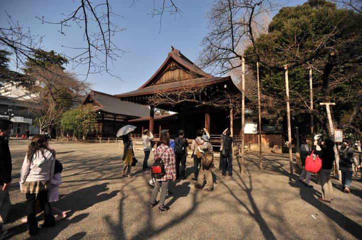 yasukuni_shrine_cherry_blossoms_countdown_1785