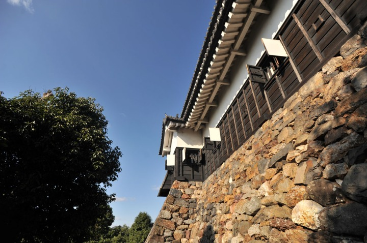 inuyama_castle_1706