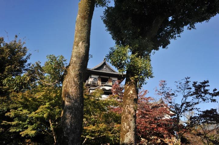 inuyama_castle_1708