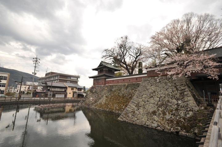 takashima_castle_suwa_cherryblossom_4964