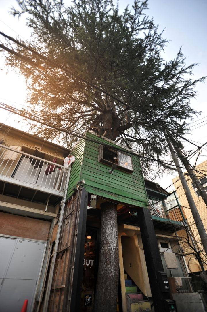 hideaway_treehouse_cafe_harajuku_8480