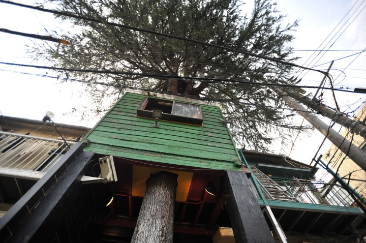 hideaway_treehouse_cafe_harajuku_8484