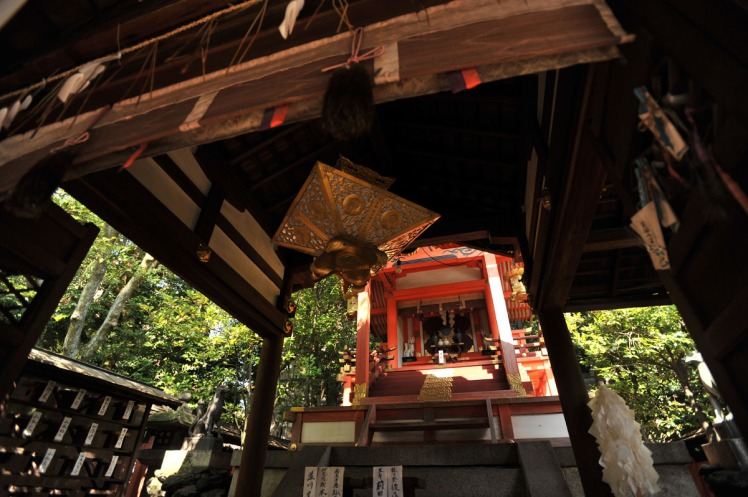 manzokuinarijinja_kyoto_8582