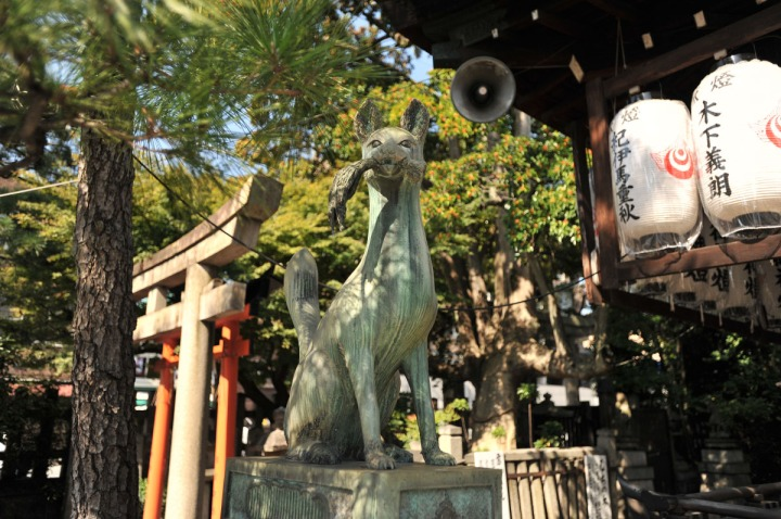 manzokuinarijinja_kyoto_8594