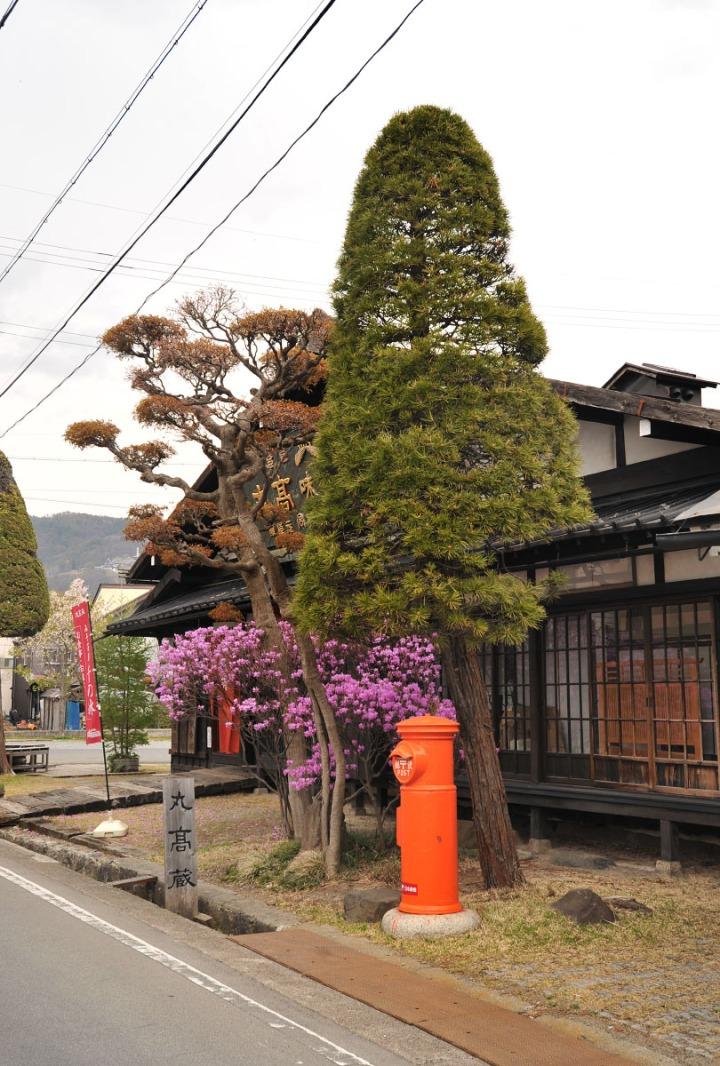 suwa_marutaka_miso_4032