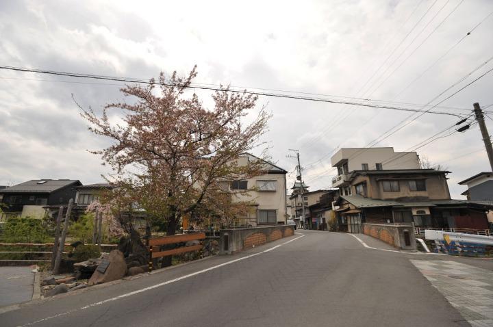 suwa_marutaka_miso_4034