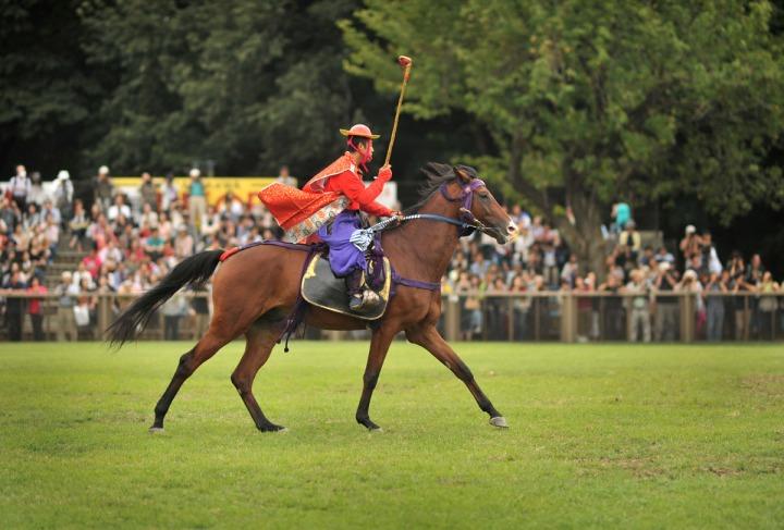 horse_day_bajikouen_3802