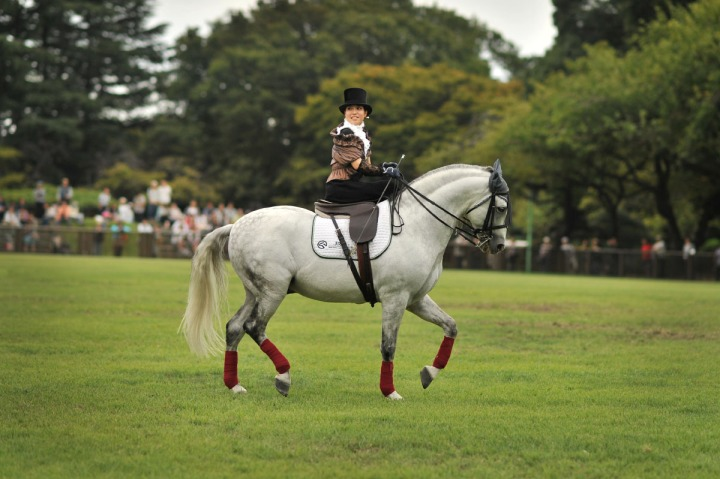 horse_day_bajikouen_3866