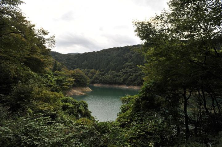 lake_okutama_forest_5737