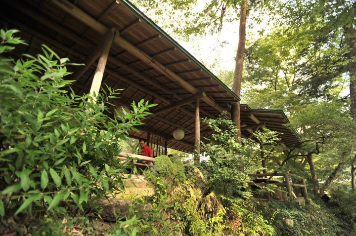 tamagawa_river_walk_sawai_3137