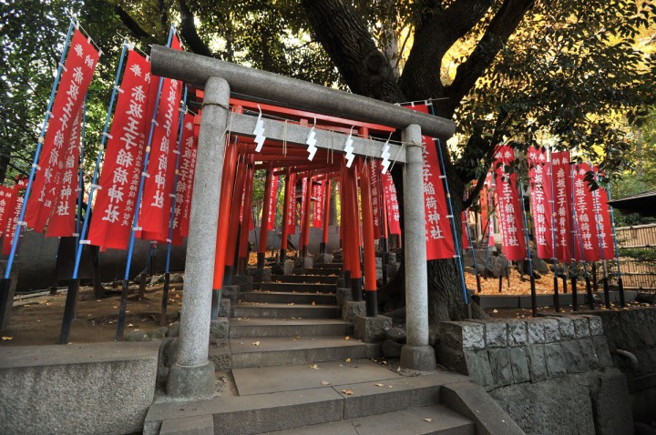 nogi_shrine_nogizaka_1624