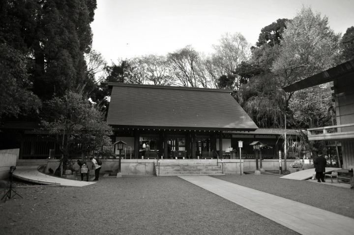 nogi_shrine_nogizaka_1662