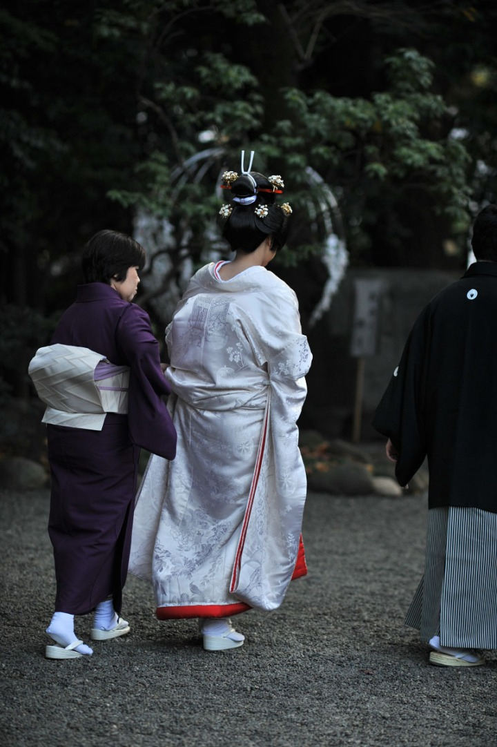 nogi_shrine_nogizaka_1679