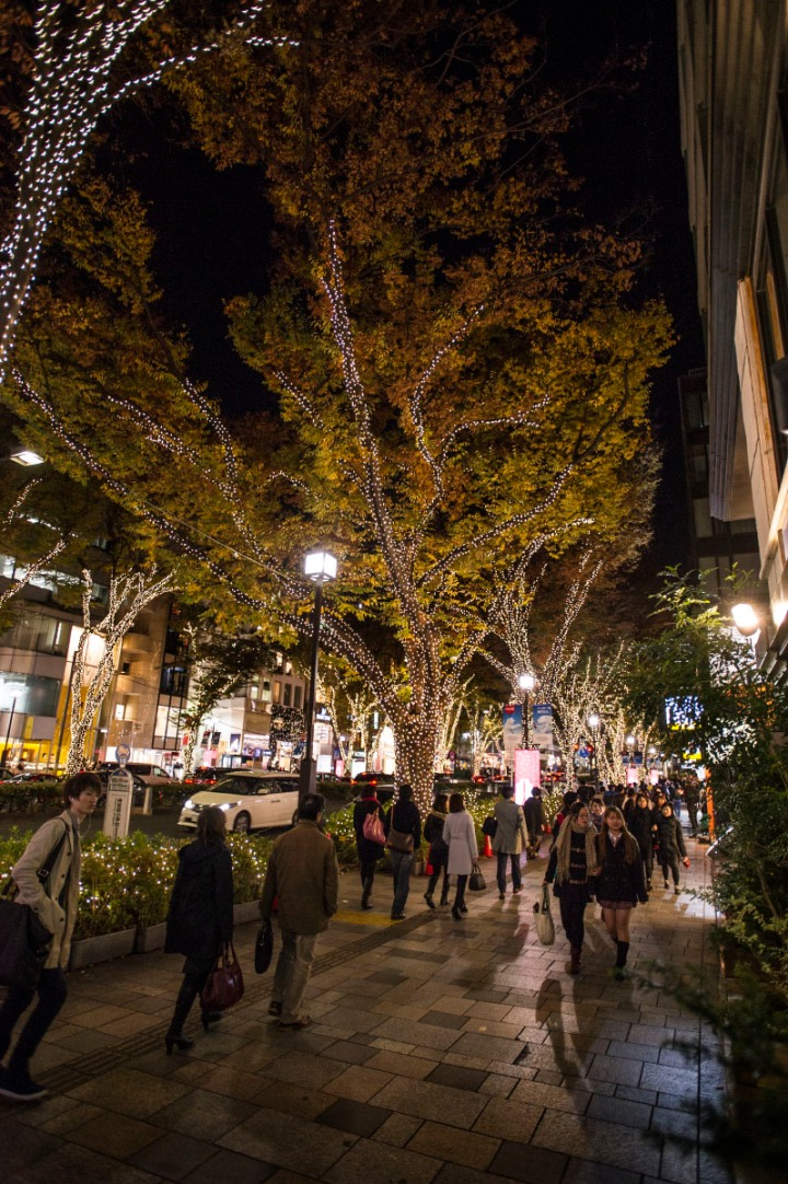 omotesando_illuminations_0199
