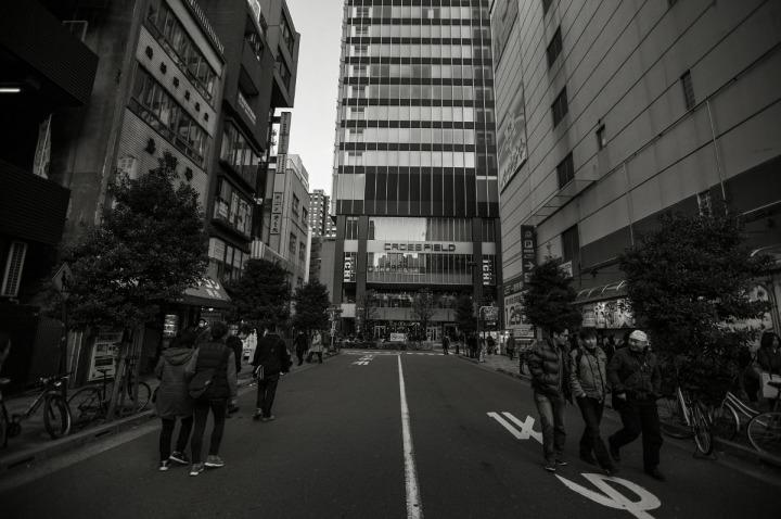 hanabusajinja_akihabara_5731