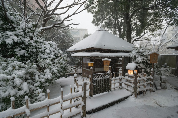snow_chinzanso_garden_2503