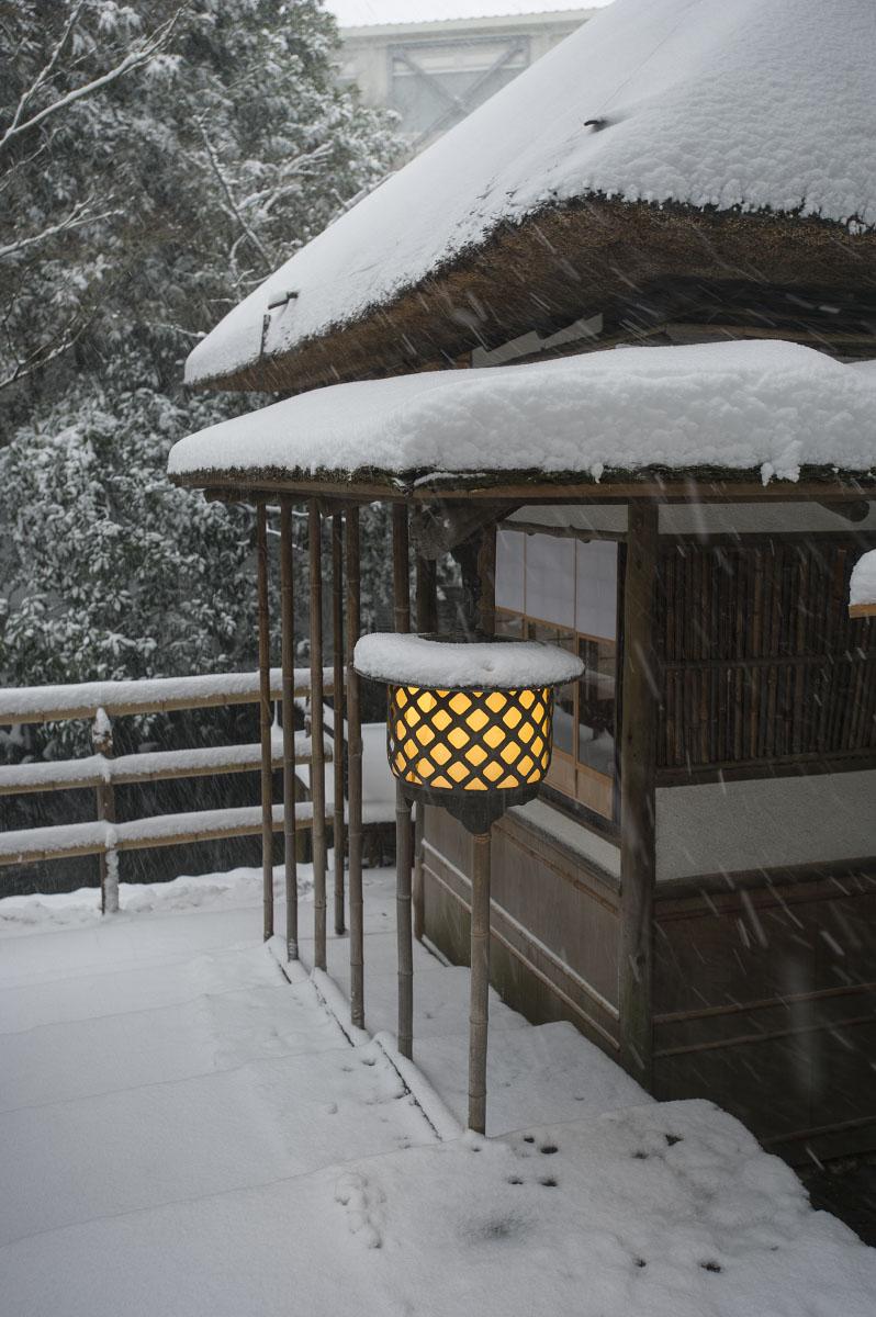 Snowy Tokyo – Chinzanso Garden