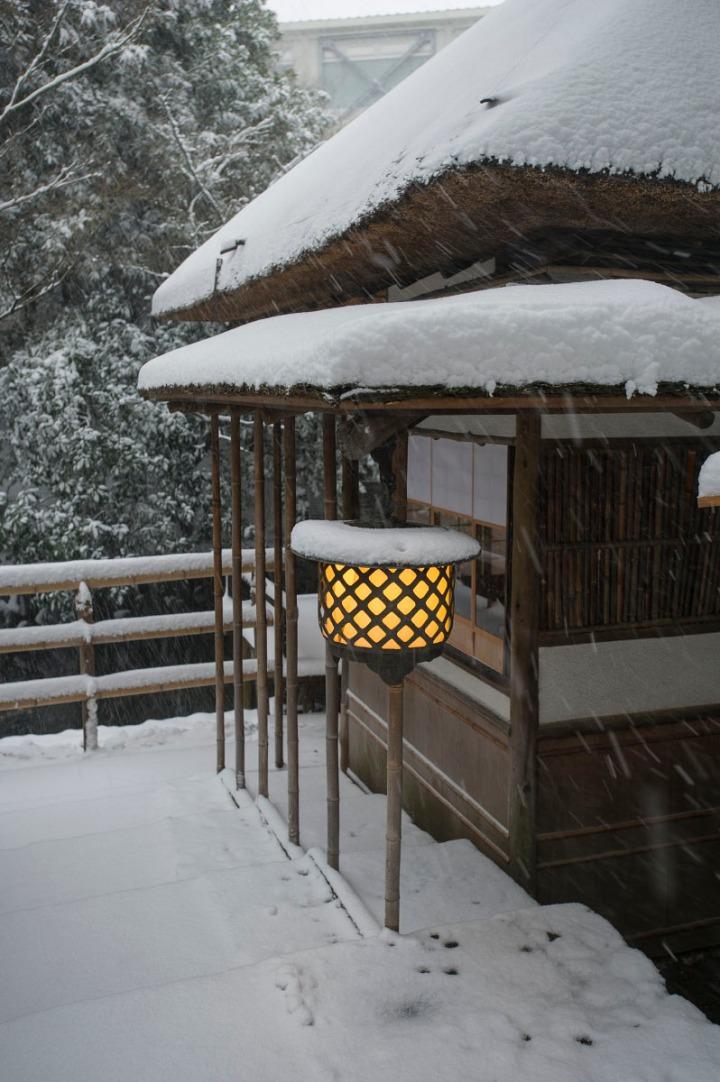 snow_chinzanso_garden_2512