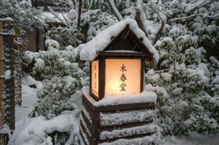 snow_chinzanso_garden_2517