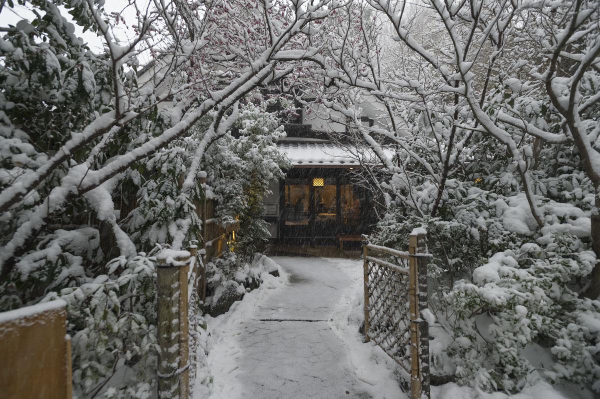 Snowy Tokyo – Chinzanso Garden | Tokyobling's Blog