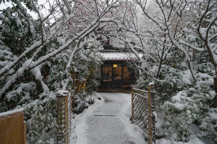 snow_chinzanso_garden_2518
