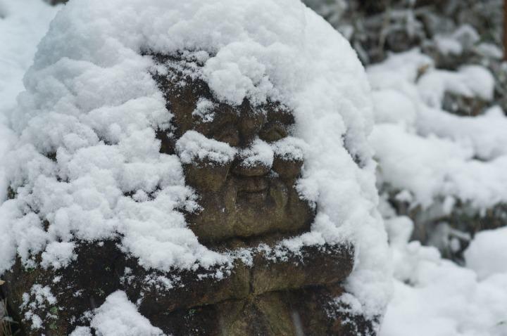 snow_chinzanso_garden_2597