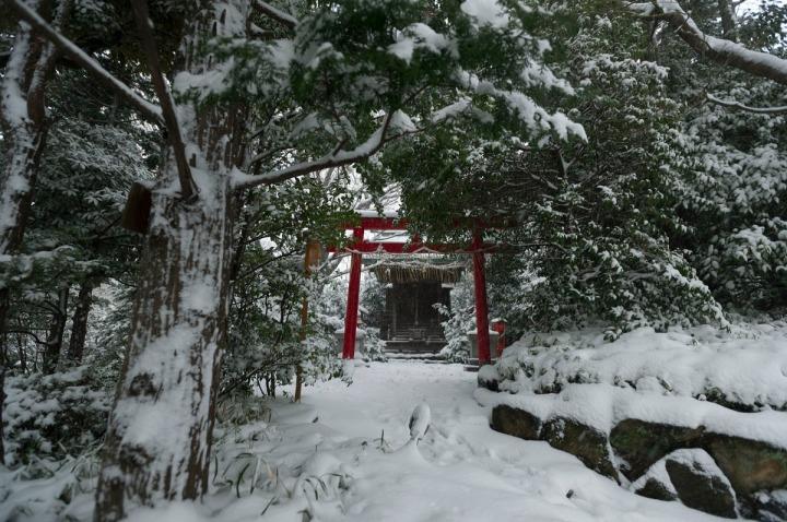 snow_chinzanso_garden_2627