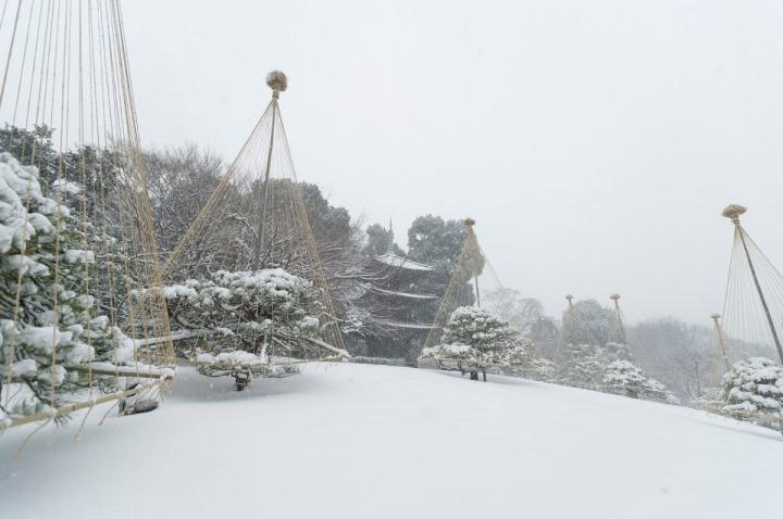 snow_chinzanso_garden_2648