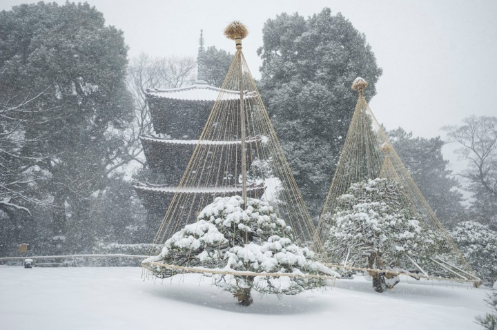 snow_chinzanso_garden_2660