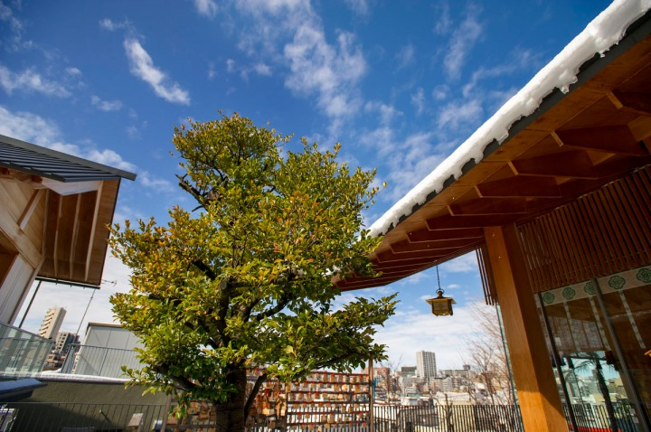 snowy_akagi_shrine_kagurazaka_2801