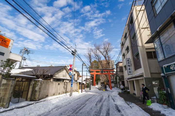 snowy_akagi_shrine_kagurazaka_2838