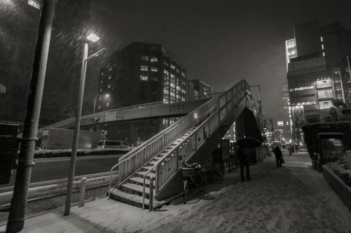 snowy_omotesando_3148