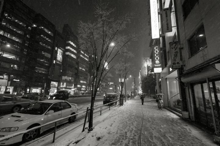 snowy_omotesando_3184