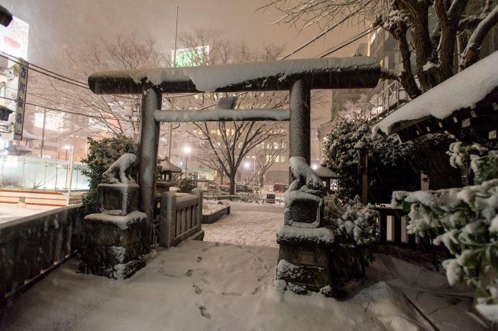 snowy_omotesando_3259