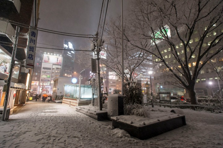 snowy_omotesando_3261