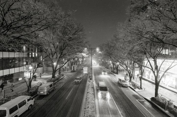 snowy_omotesando_3314