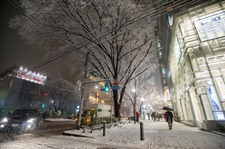 snowy_omotesando_3359