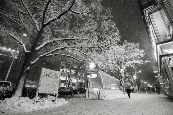 snowy_omotesando_3365