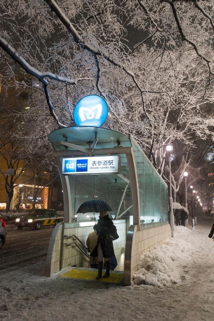 snowy_omotesando_3401