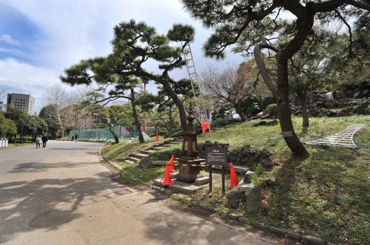 hibiya_park_spring_8123