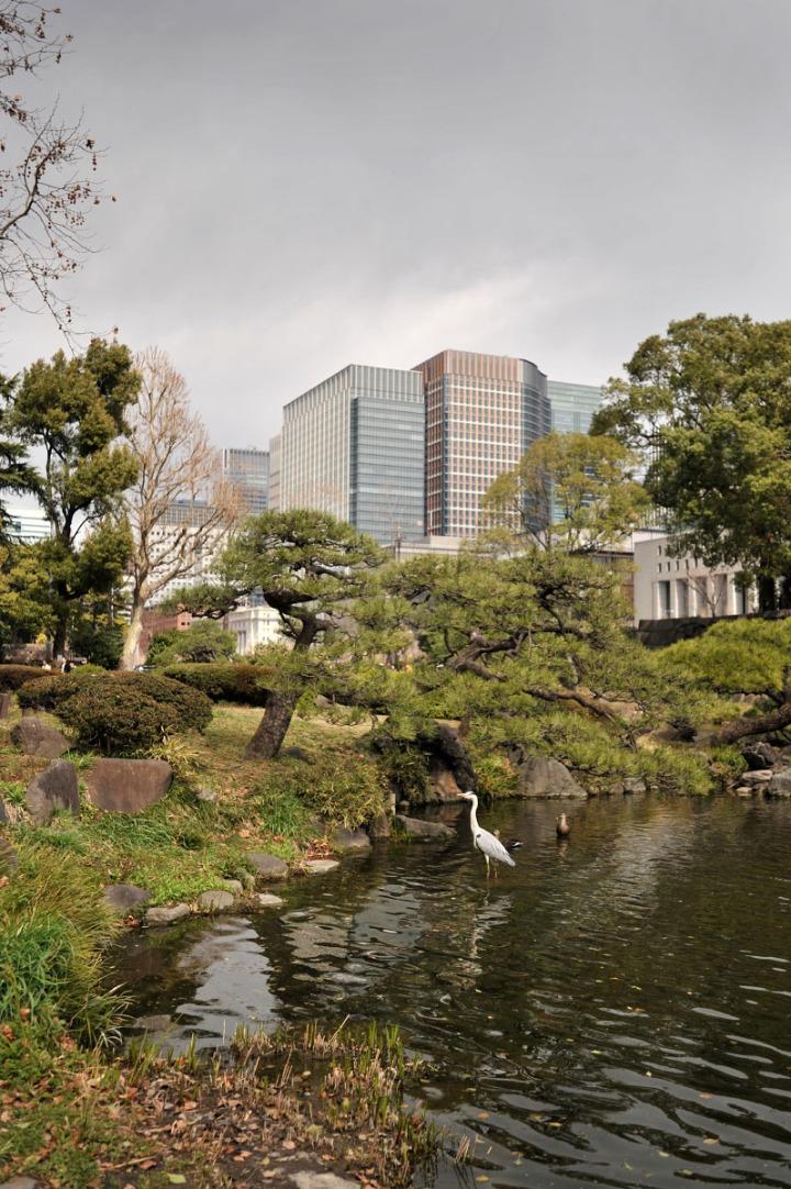 hibiya_park_spring_8220